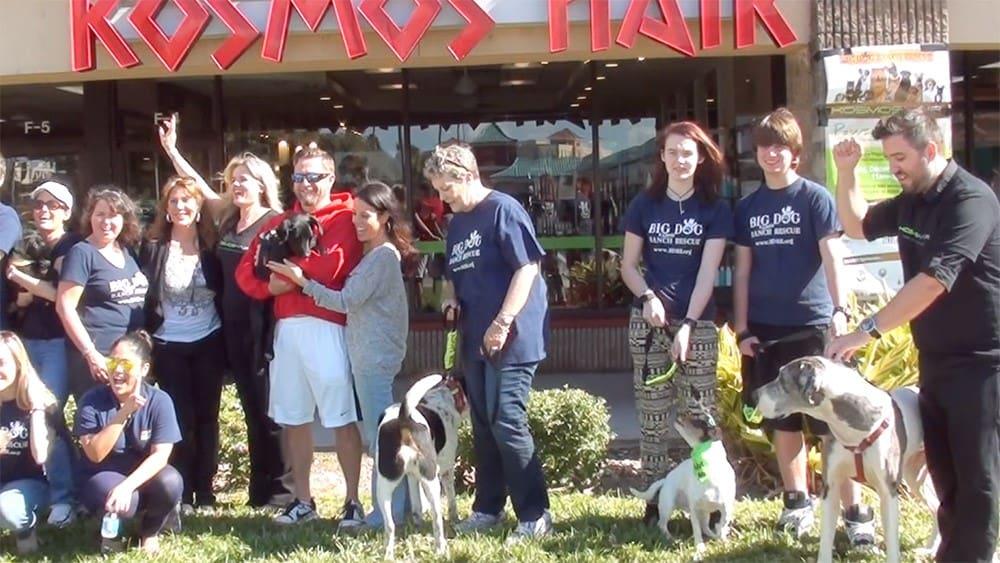 Kosmos hair amp big dog ranch rescue 3